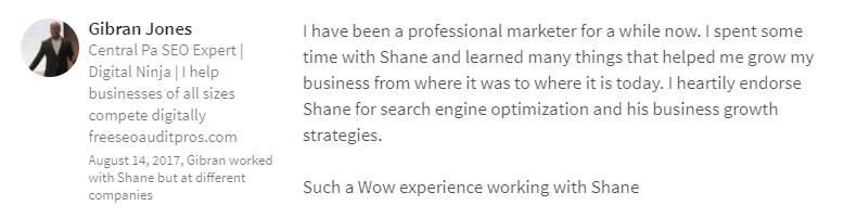 Georgia SEO Explosion LinkedIn Review 8